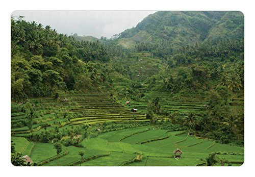 Ambesonne Balinese Pet Mat for Food and Water, Terraced Rice Paddies in Hillside Tropical Valley Asian Farming Life Agriculture Theme, Rectangle Non-Slip Rubber Mat for Dogs and Cats, Green - Terraced Rice