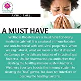 Echinacea Elderberry Goldenseal & More - 200 Caps - Wellness Boosters - Thousands of Patients Love This - by Dr. Valerie Nelson