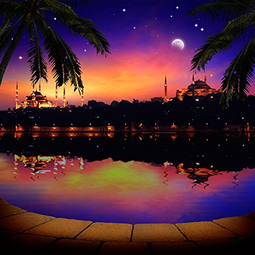 Photography Backdrop - Arabian Nights with Palm Trees - 10x10 - 100% Seamless Polyester