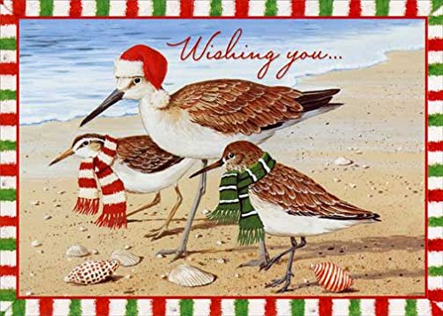 Birds with Holiday Attire - Red Farm Studios Box of 18 Beach Christmas Cards (Studios Farm Red)