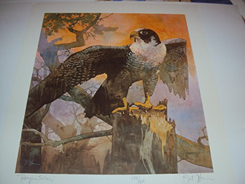 Peregrine Falcon by Bart Forbes Hand Signed & Numbered Lithograph Art Print