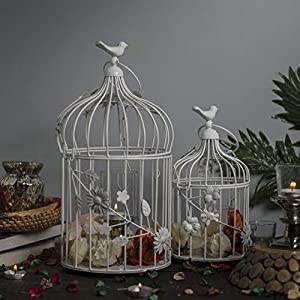 Homesake Bird Cage with Floral Vine (Gloosy White, Set of 2)