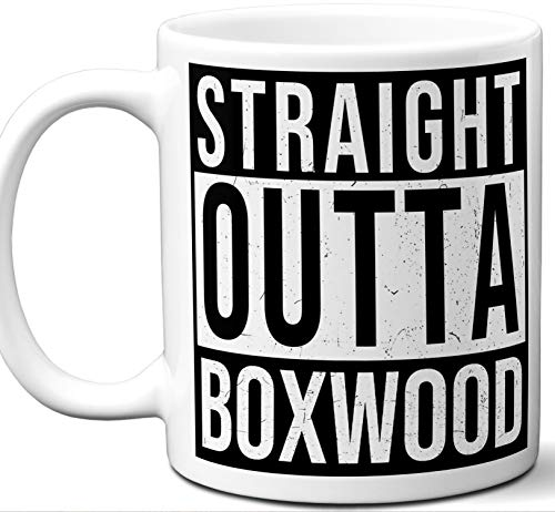 (Boxwood Delaware DE Souvenir Gift Mug. Unique