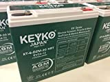 KEYKO Electric Scooters, Tricycle, Bikes, Golf Cars and Electric Motorcycles 12V 24Ah