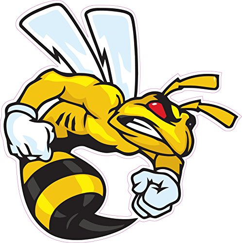 Ski-Doo Angry Bee Large Decal 10 Fast from The United States