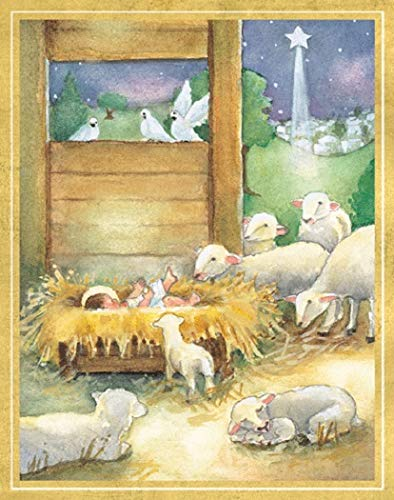 Religious Christmas Cards Boxed Holiday Cards Christmas Greeting Cards Pk 16 & Envelopes Creche Scene