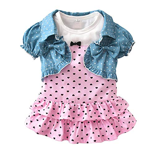 Summer Baby Girl Clothes Short-Sleeved Jacket and Dress Outfit Sets (Pink, 18-24 Months) (Set Outfit Jacket)
