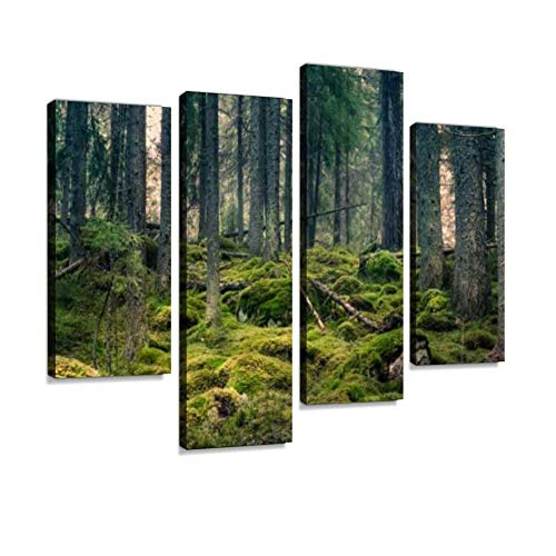 Old primeval Forest with Nice Lights and Shadows Canvas Wall Art Hanging Paintings Modern Artwork Abstract Picture Prints Home Decoration Gift Unique Designed Framed 4 Panel