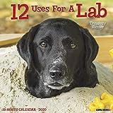 12 Uses for a Lab 2020 Wall Calendar (Dog Breed Calendar)