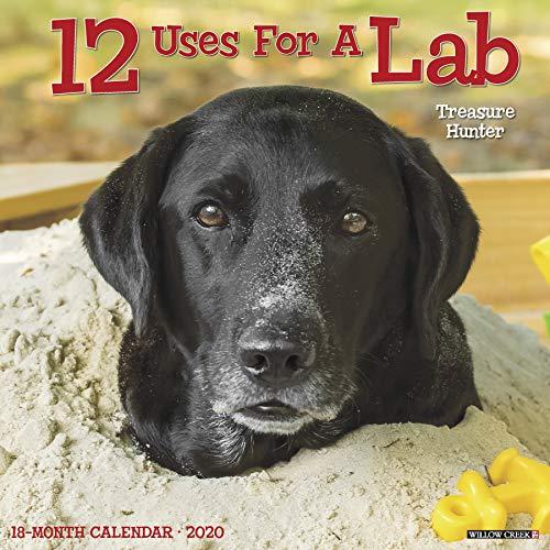 (12 Uses for a Lab 2020 Wall Calendar (Dog Breed Calendar))