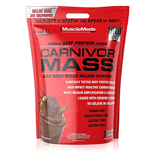 - MuscleMeds Carnivor Mass Anabolic Beef Protein Gainer, Chocolate Fudge, 10.7 Pounds