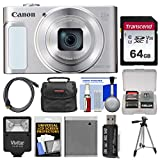 Canon PowerShot SX620 HS Wi-Fi Digital Camera (Silver) with 64GB Card + Case + Flash + Battery + Tripod + HDMI Cable + Kit Review