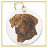 Ornament decorated with a Chesapeake Bay Retriever Dog