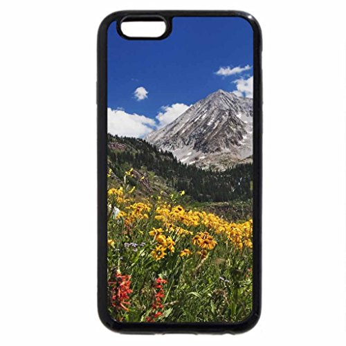 iPhone 6S Case, iPhone 6 Case (Black & White) - meadow at lead-king-basin colorado