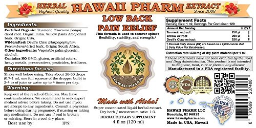 Low-Back-Pain-Relief-Liquid-Extract-Herbal-Dietary-Supplement-2x4-oz