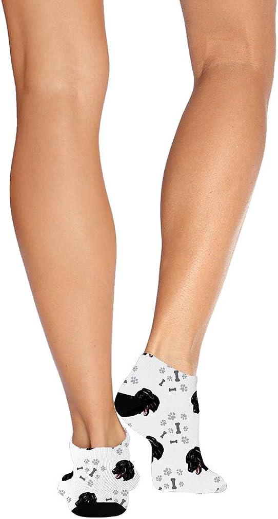 Cao De Castro Laboreire Dog Pattern #6 Men-Women Adult Ankle Socks
