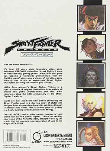 Image of Street Fighter Tribute