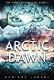 Arctic Dawn (The Norse Chronicles) (Volume 2)