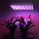 Superdream High Power 120W Led Plant Grow Light Panel 1365 Led for Hydroponic Plants Flowers Vegetables Greenhouse Hydro Lighting