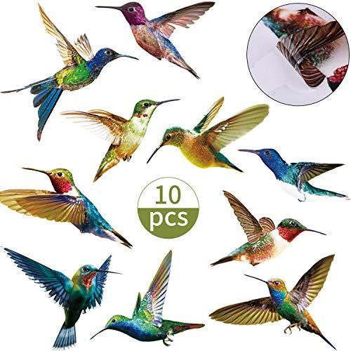 Bird Clings - 8