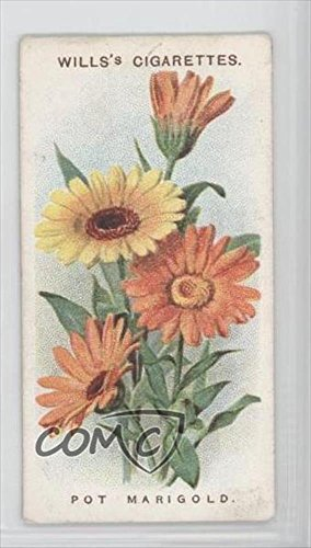 Marigold Pots (Pot Marigold COMC REVIEWED Good to VG-EX (Trading Card) 1913 Wills Old English Garden Flowers Series 2 Tobacco [Base])