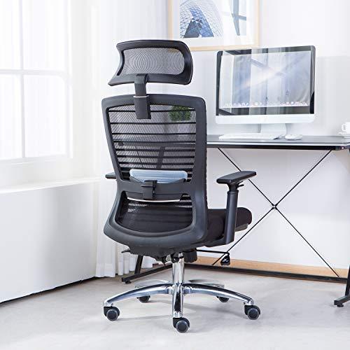 NOVELLAND Ergonomic Reclines Office Chair