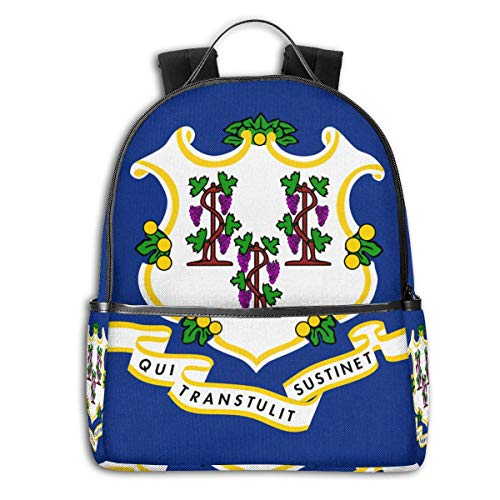 State Of Connecticut Flag Laptop Backpack Travel Water Resistant College School Bookbag For Women And Men Slim Business Anti Theft Computer Bag Fits UNDER 14 In Notebook