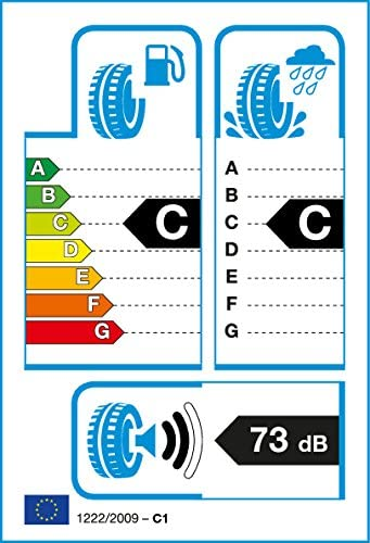 C//C//73dB WINTER reifen WANLI MP-5420068633401-255//40//R19 100V