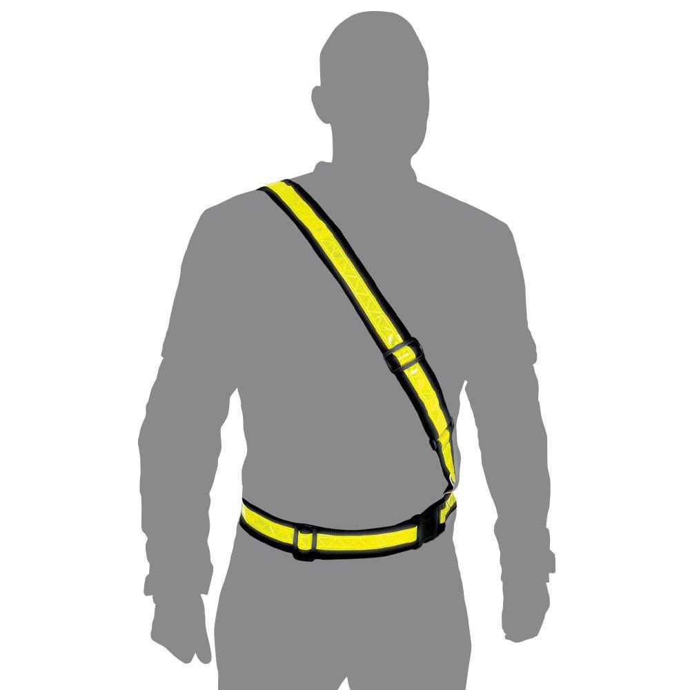 Oxford - Cinturón brillante
