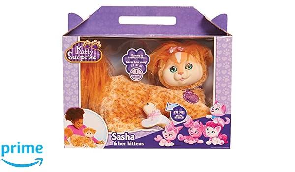 Hello Kitty peluche sorpresa: Sasha (Ginger) - Wave 5: Amazon.es: Juguetes y juegos
