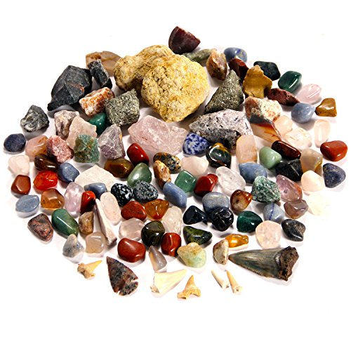 BEST rock collection for lighting the fire of discovery in young scientists. Huge! 3 lbs of Gems, Minerals, Fossils. The ONLY kit with a Megalodon Shark tooth & LARGER geodes for exciting fun! - Crystal Polished Lighting