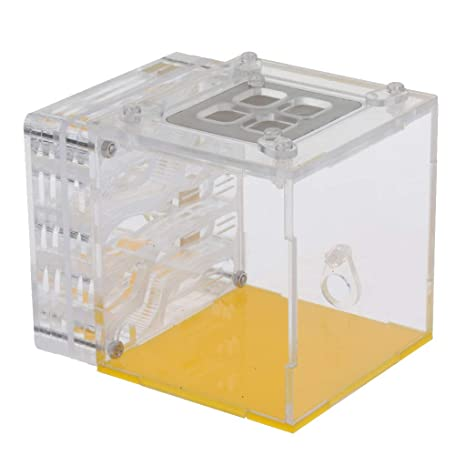 Ant Nest Housing Ant Farm Box Formicarium Display Case For Small Ant Colony