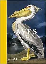 Aves extraordinarias (Ilustrados): Amazon.es: Avery, Mark, Delgado Castro, Alberto: Libros