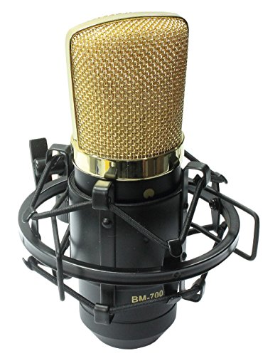 iSK BM-700 Broadcasting and Recording Condenser Microphone
