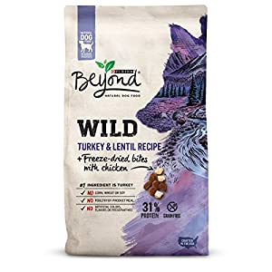 Purina Beyond WILD Turkey & Lentil Recipe + Freeze-Dried Bites With Chicken Adult Dry Dog Food - 7 lb. Bag