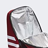 adidas Unisex Santiago Insulated Lunch Bag, Active
