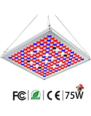 TOPLANET Large Size 300w/75w/mini Lamp