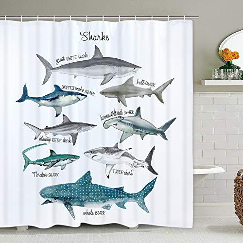 Shark Shower Curtain Marine Theme Sealife Shower Curtain, Fish Shower Curtain with 12 Hooks, Waterproof Durable Bath Curtains (Marina Curtains)