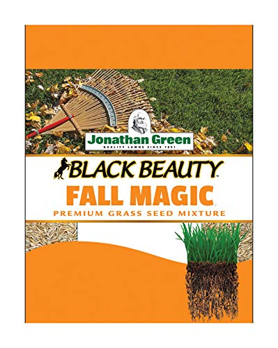 Buy grass seed for fall