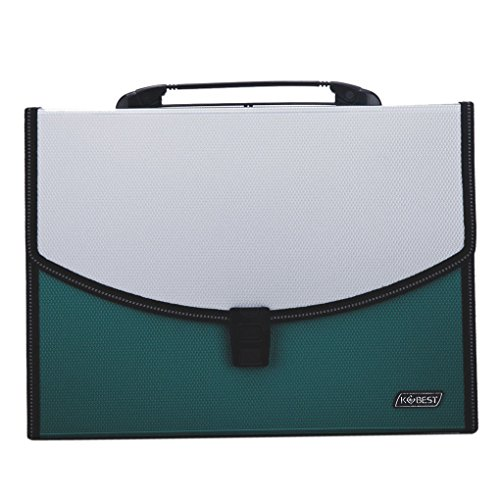 13 Pockets Expanding File Folder Portable Hand-Held Accordion File Document Folder Organizer A4 and Letter SizeLarge PlasticOffice Business Wallet Briefcase Filing Box with Handle,Buckle (26 Pocket Expanding Poly Document)