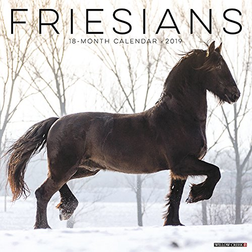 Friesians 2019 Wall Calendar (Dog Breed Calendar)