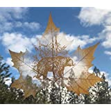 Grizzly Bear REAL LEAF Art, Carved by Hand, Home Wall Décor, One of a Kind, Made from Real Leaf