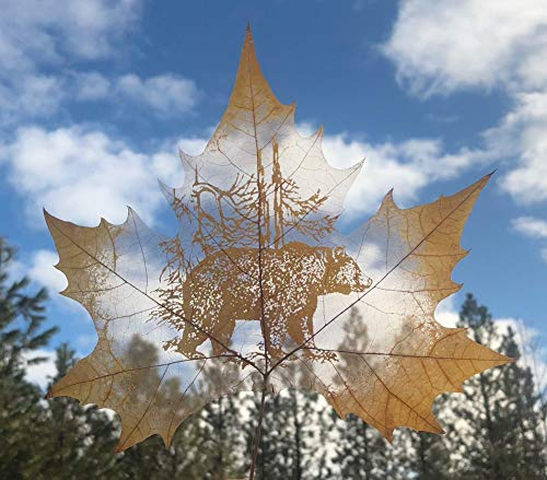 Grizzly Bear REAL LEAF Art, Carved by Hand, Home Wall Décor, One of a Kind, Made from Real Leaf ()