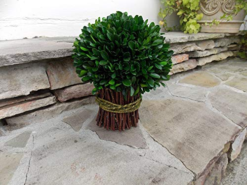 Real Preserved Boxwood Topiary Bouquet Orb for Spring Summer Year Round Christmas Thanksgiving Holiday Centerpiece Table Decor Wedding Housewarming Gift, Rustic Modern Farmhouse Style, Handmade 10""