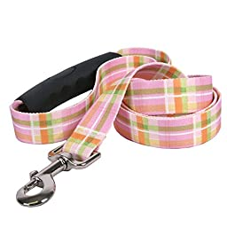 Southern Dawg Madras Pink Dog Leash with Comfort Grip Handle-Medium-3/4\
