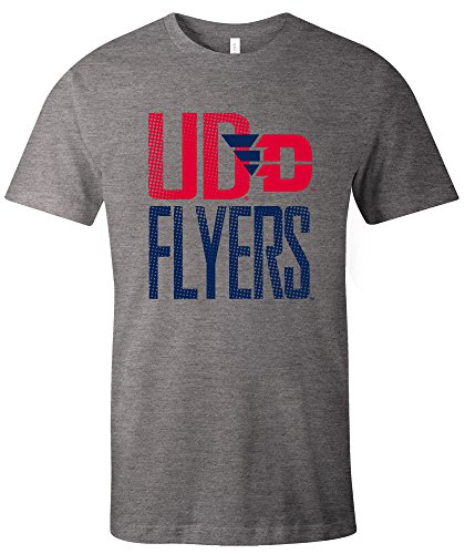 Image One NCAA Dayton Flyers Adult NCAA Dotted Phrase Short Sleeve Triblend T-Shirt,Small,Grey