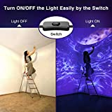 Onforu 2 Pack 100W LED Black Light, Blacklight