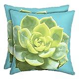 16'' Patio Square Toss Decorative Pillow (Set of 2, Succulent)