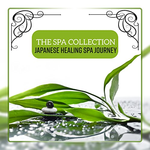 Japanese Healing Spa Journey Japanese Spa