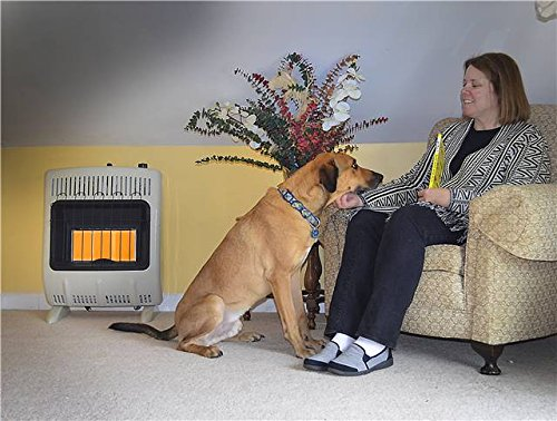 Heater Corporation Vent-Free 20,000 BTU Radiant Natural Gas Heater Multi Mr